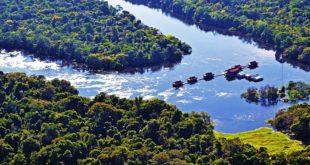 Amazonas Touren am Rio Japurá